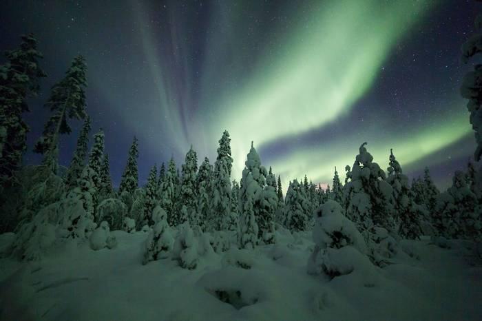 Aurora borealis (Northern Lights) in Finland, lapland