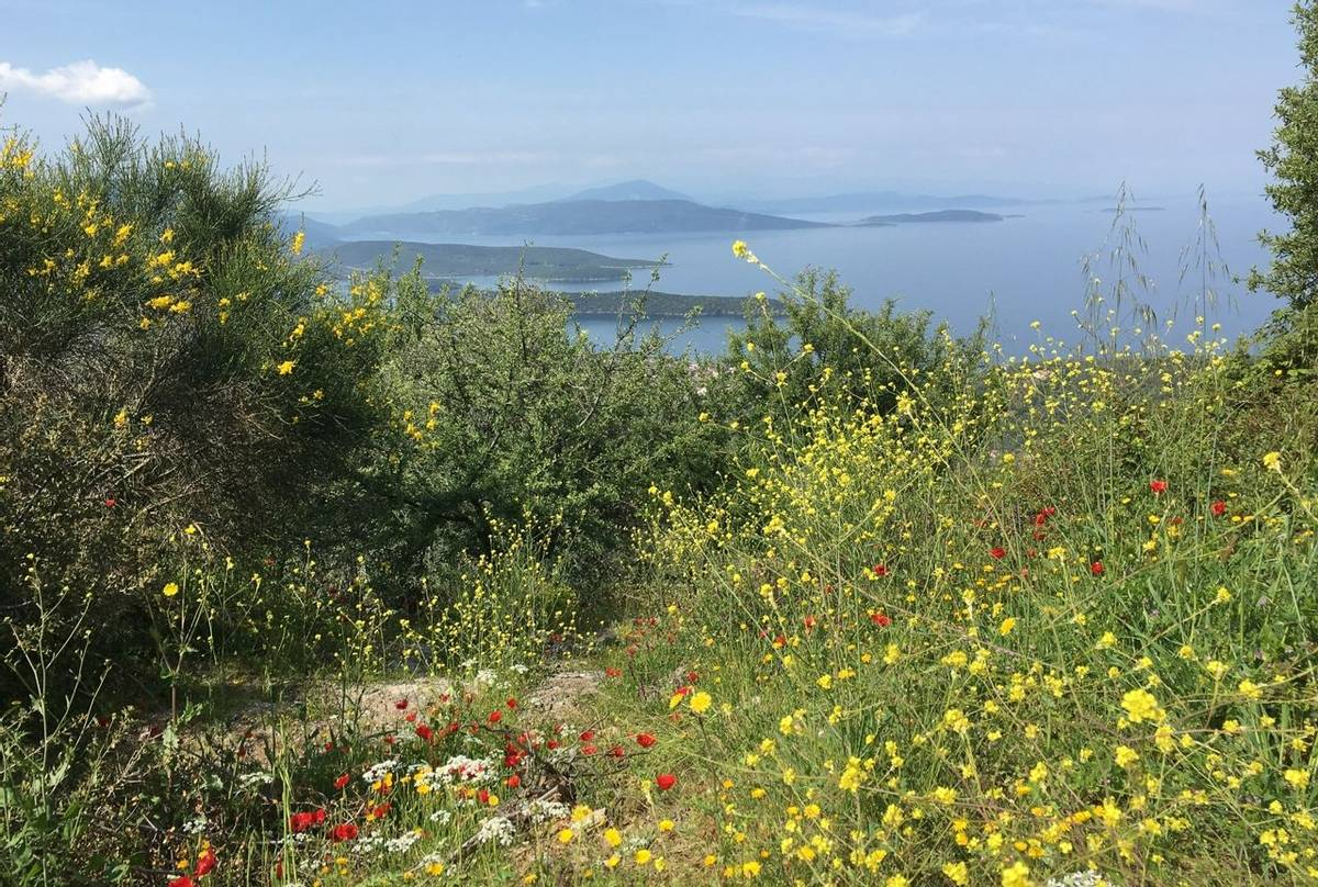 View over the Pelion peninsula