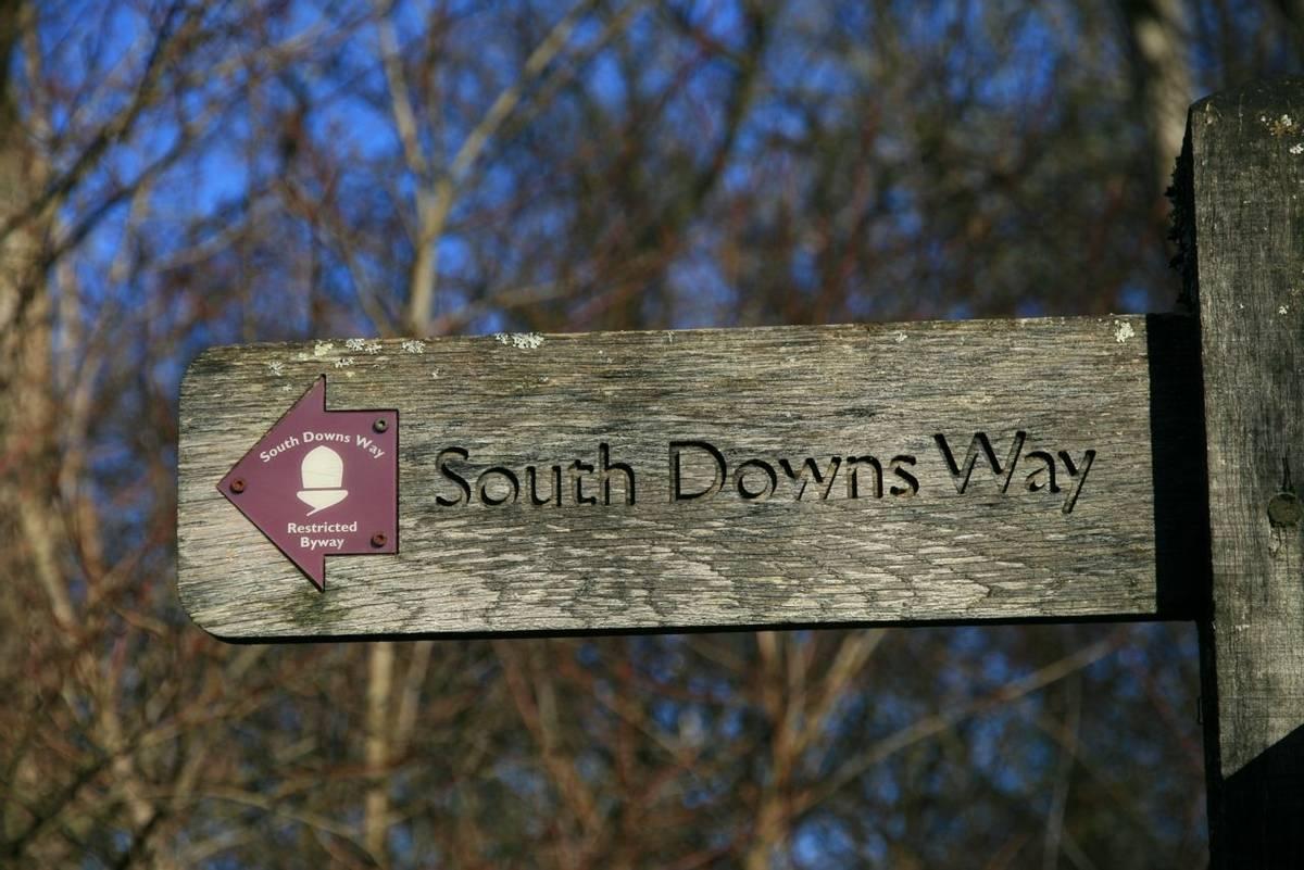 South_Downs_way_sign_3.JPG