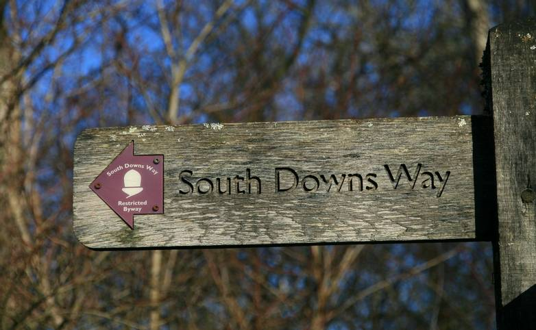 South_Downs_way_sign_3.JPG