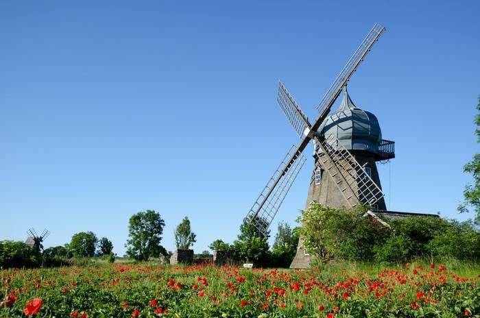 Windmill and Poppies, Oland Island, Sweden shutterstock_106478426.jpg