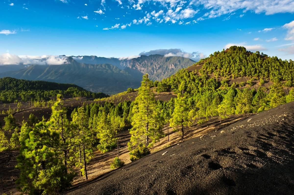 Beautiful lava landscape on the Cumbre Nueva in La Palma