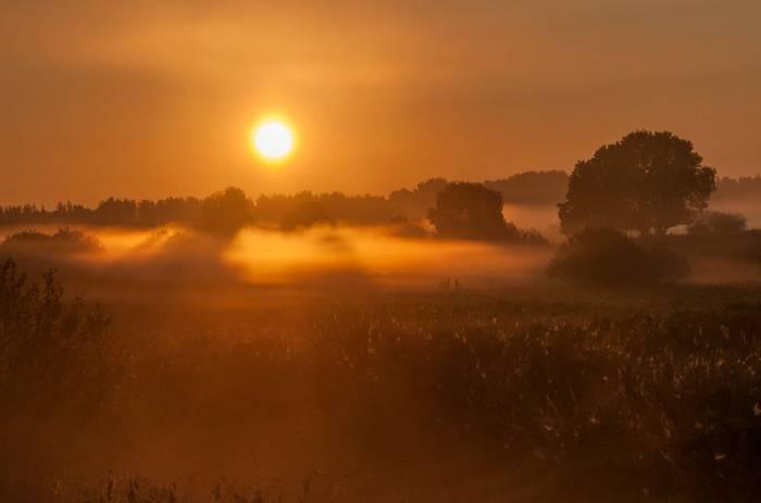 Misty Meadow (Tim Melling)