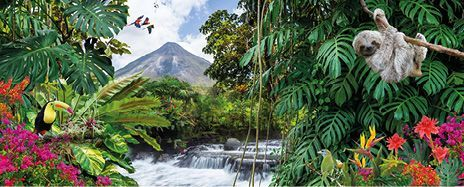Cloud Forests, Costa Rica & Luxury Caribbean Cruise
