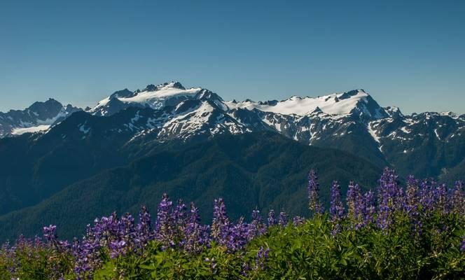Mount Olympus Shutterstock 148471175