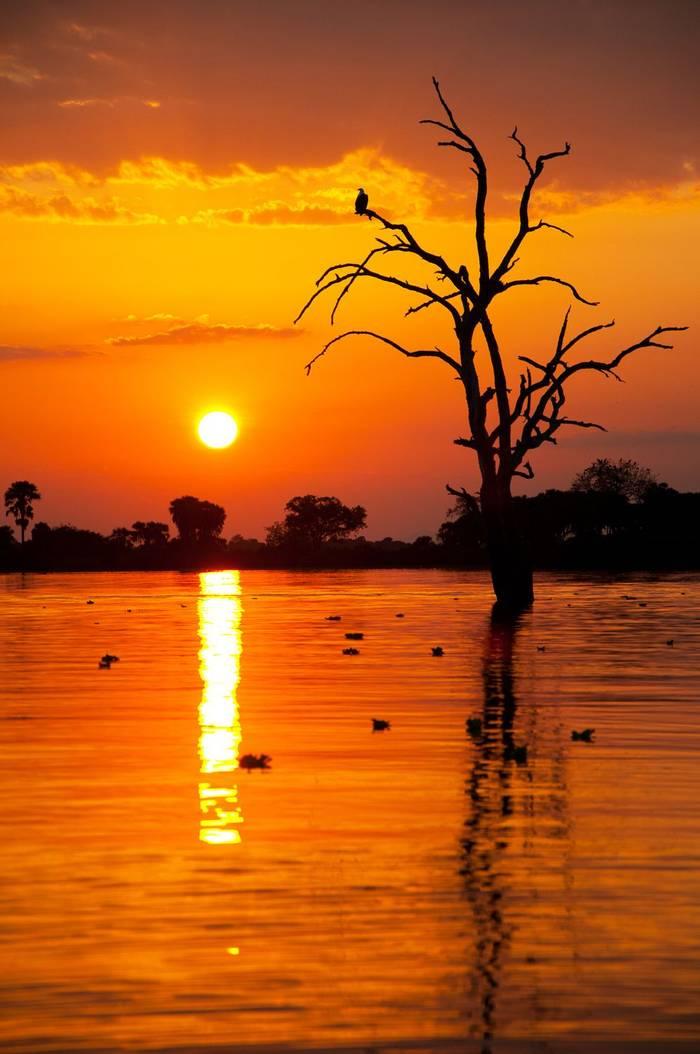 Lake Manze, Selous Game Reserve Shutterstock 153270011 2