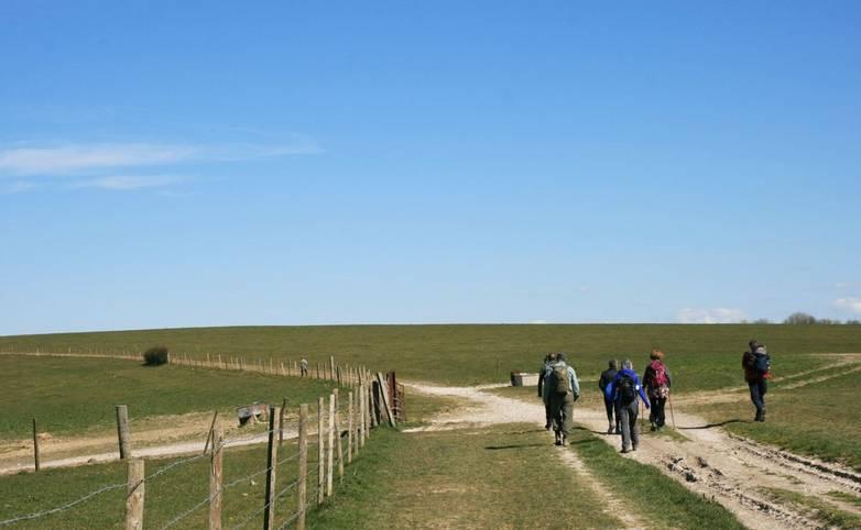 South_Dwons_Way_Group_Walking.JPG