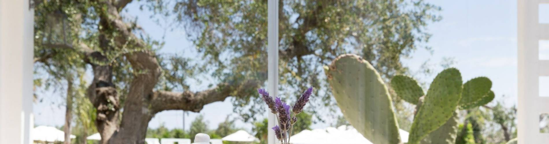 Tenuta Centoporte, Puglia 4.jpg