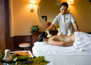 Ananda-spa-treatment-back.jpg