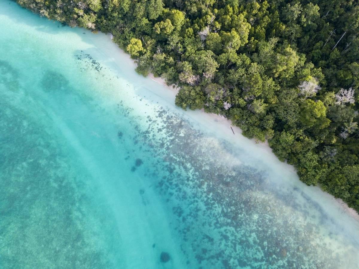 Papua New Guinea Shutterstock 1038334381