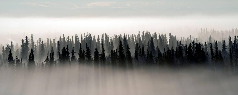 Resize - Landscape Credits Explore Fairbanks.jpg