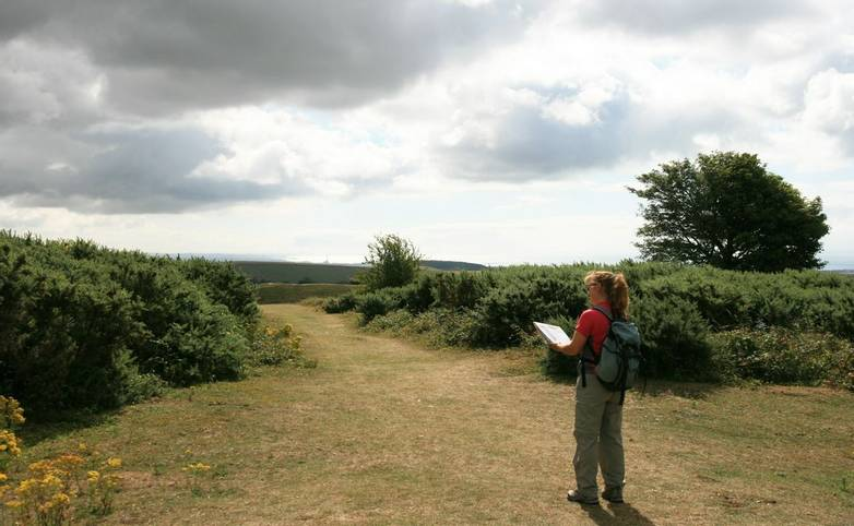 Self-guided walker Cissbury Ring.JPG