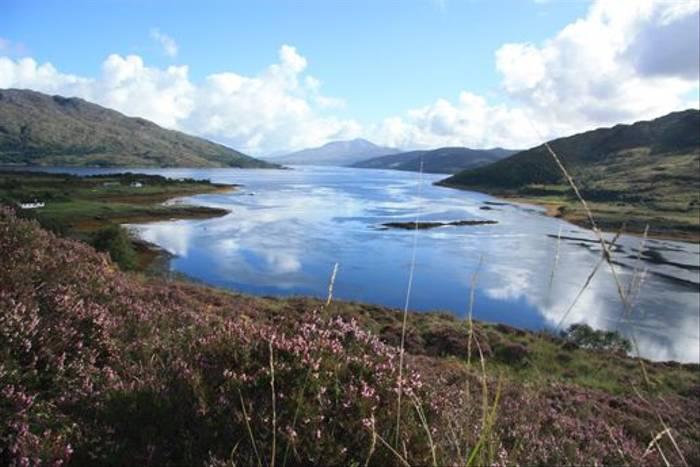 Loch Sunart (Caroline Northcott)