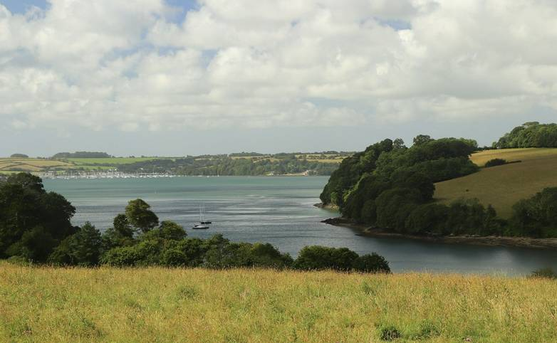 Cornwall_River_Fal_Trelissick_AdobeStock_404180958.jpeg