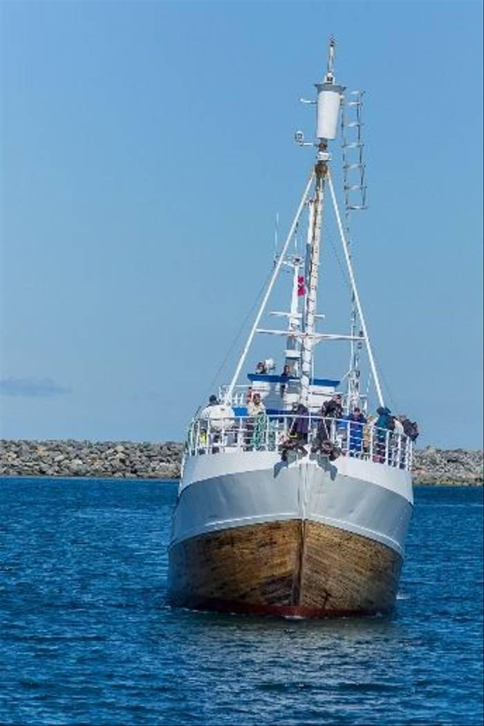 Whale watching vessel (Malcolm Stott)