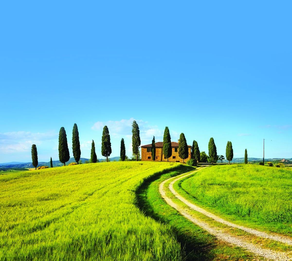 Tuscany, farmland, cypress trees and white road on sunset. Siena, Italy.