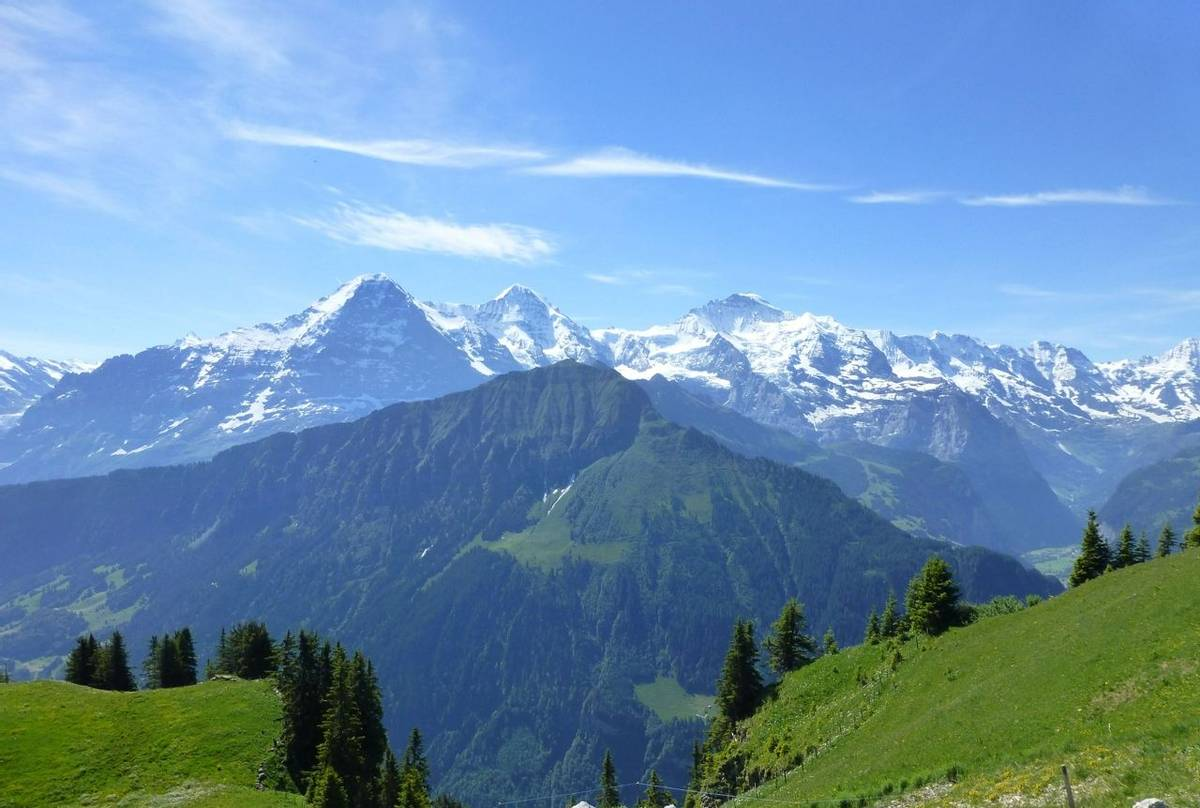 View from Schynige Platte (Kerrie Porteous)