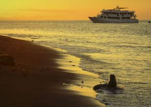 Active Tours - Galapagos