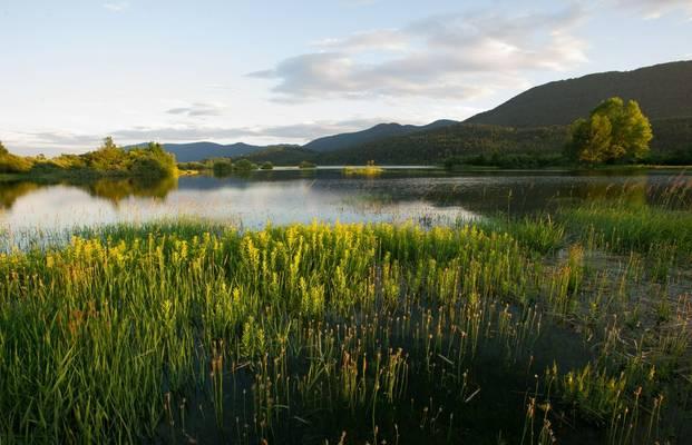 Lake Cerknica Shutterstock 222132802