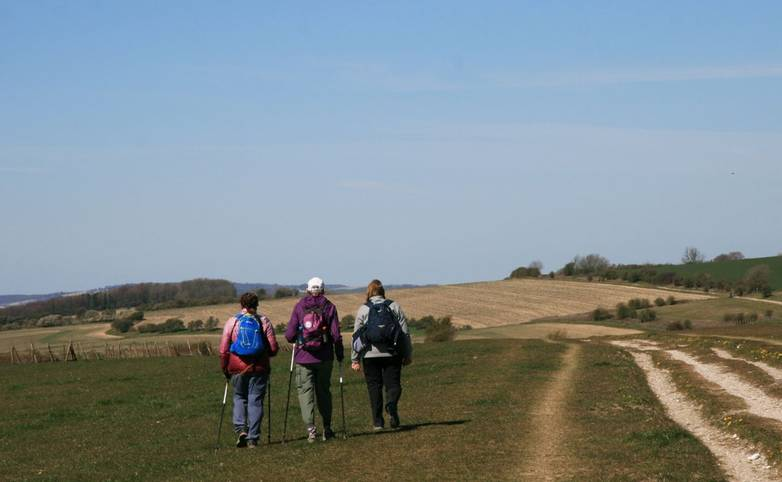 South_Downs_Way_Walkers_Group_Kithurst_Hill.JPG