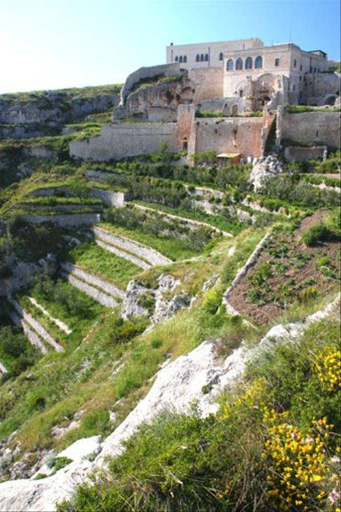 Terraces below the Pulsano Monastery (David Watson)