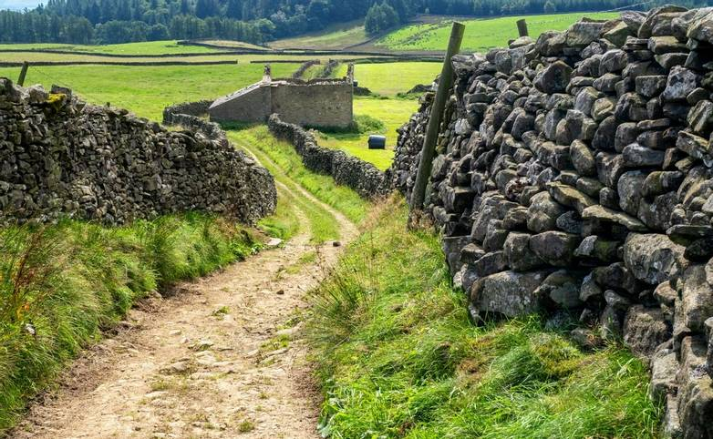 Footpath in Yorkshire Dales