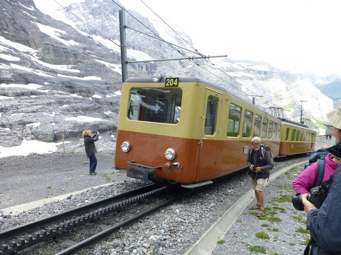 Botanising with the trains at the Eiger Gletcher (Kerrie Porteous)