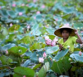 Siem Reap - Hotel Stay