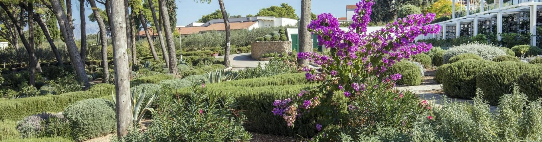 07 Resort_Velaris - Garden (4) (1).jpg