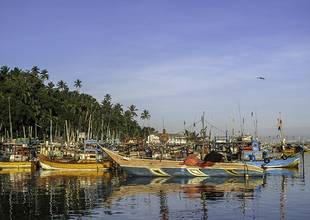 Sri Lanka Mirissa Beach Shore Boats_19034878284-1.jpg