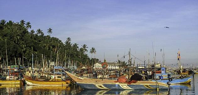 Sailing Tours - Sri Lanka