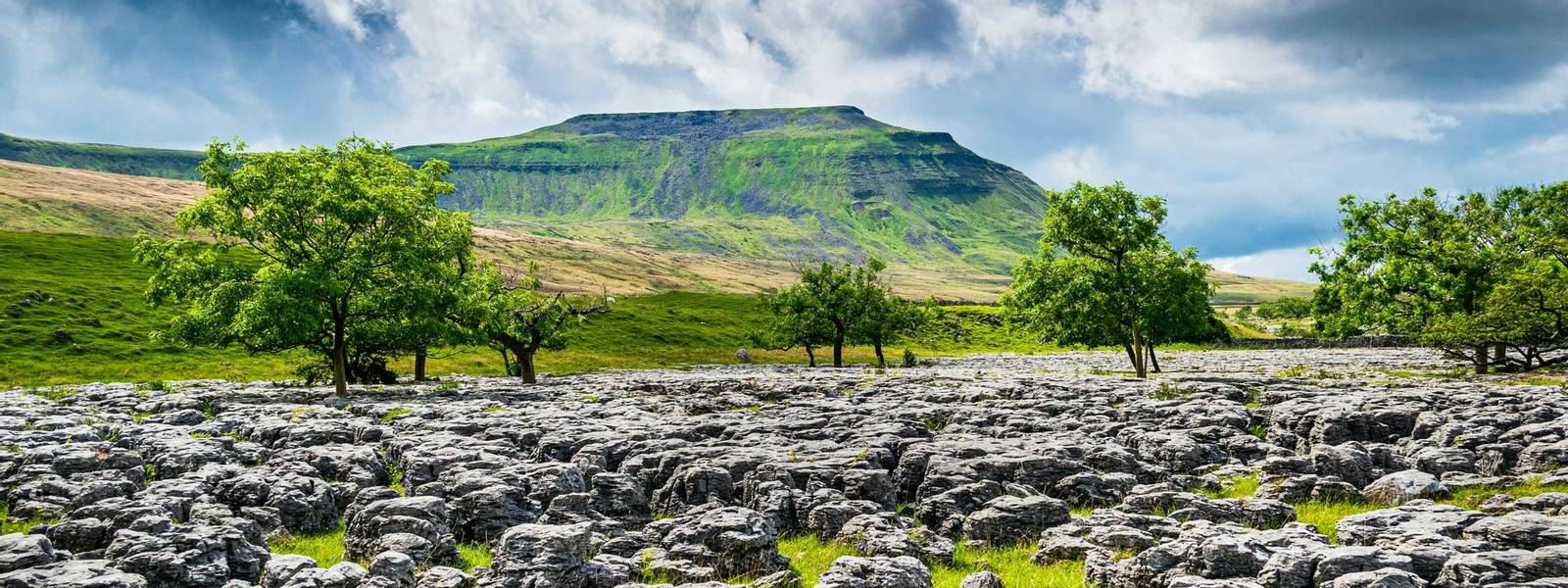 AdobeStock_282665602_Ingleborough.jpeg