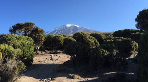 CLIMB KILIMANJARO (8 days) Machame Route