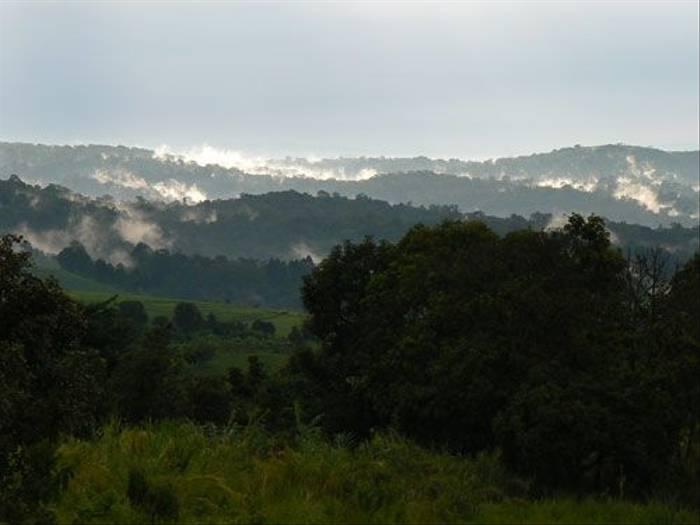 Kibale National Park (Tom McJannet)