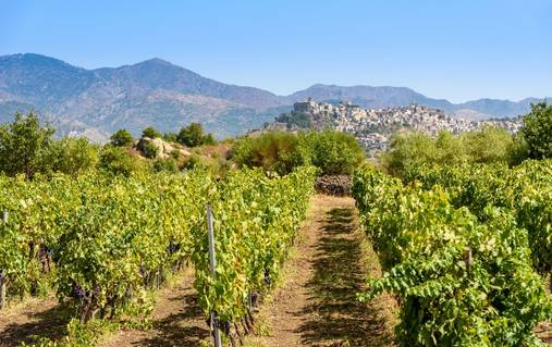 Discover Sicily
