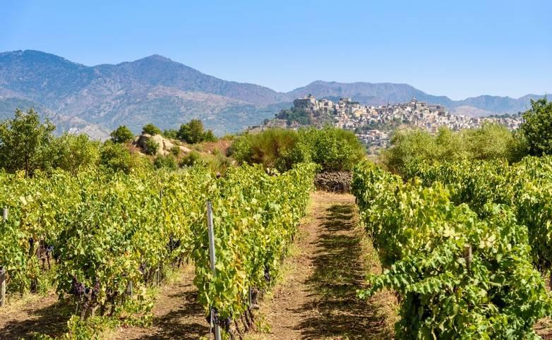 Italy - Sicily - AdobeStock_175439257.jpeg