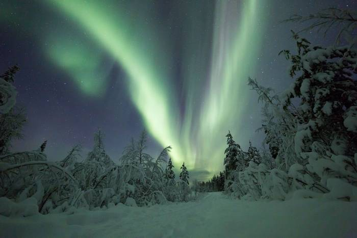Northern lights Sweden shutterstock_373194838.jpg