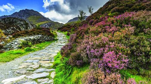 4 Night Southern Snowdonia Guided Walking for Solos Holiday