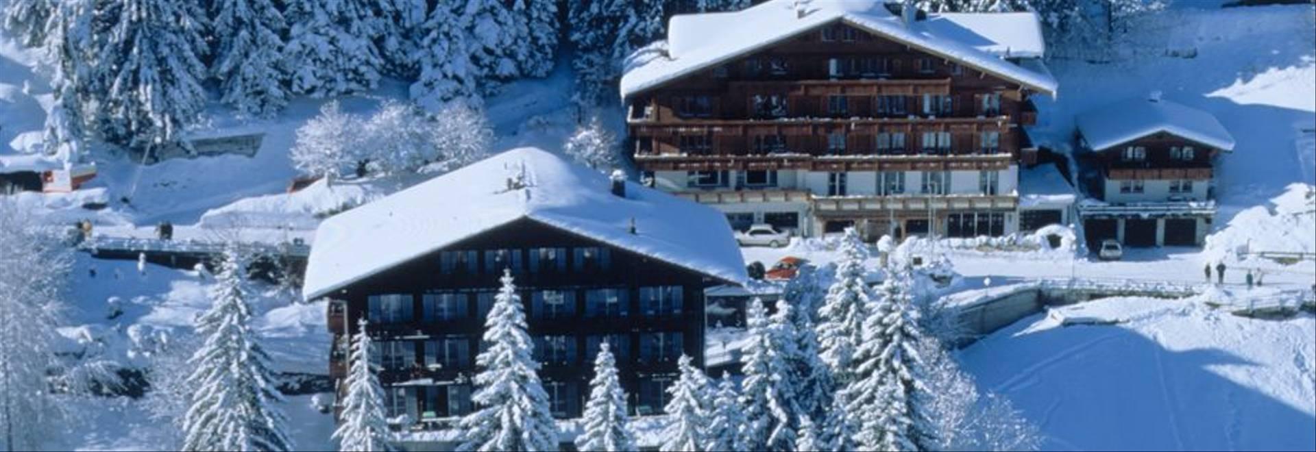 Hotel Waldhaus Huldi