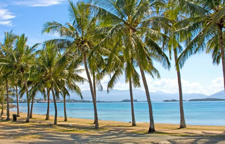 Palm tree lined beach front of Noumea, New Caledonia.