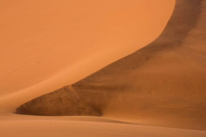 Dune 40 © R Harvey