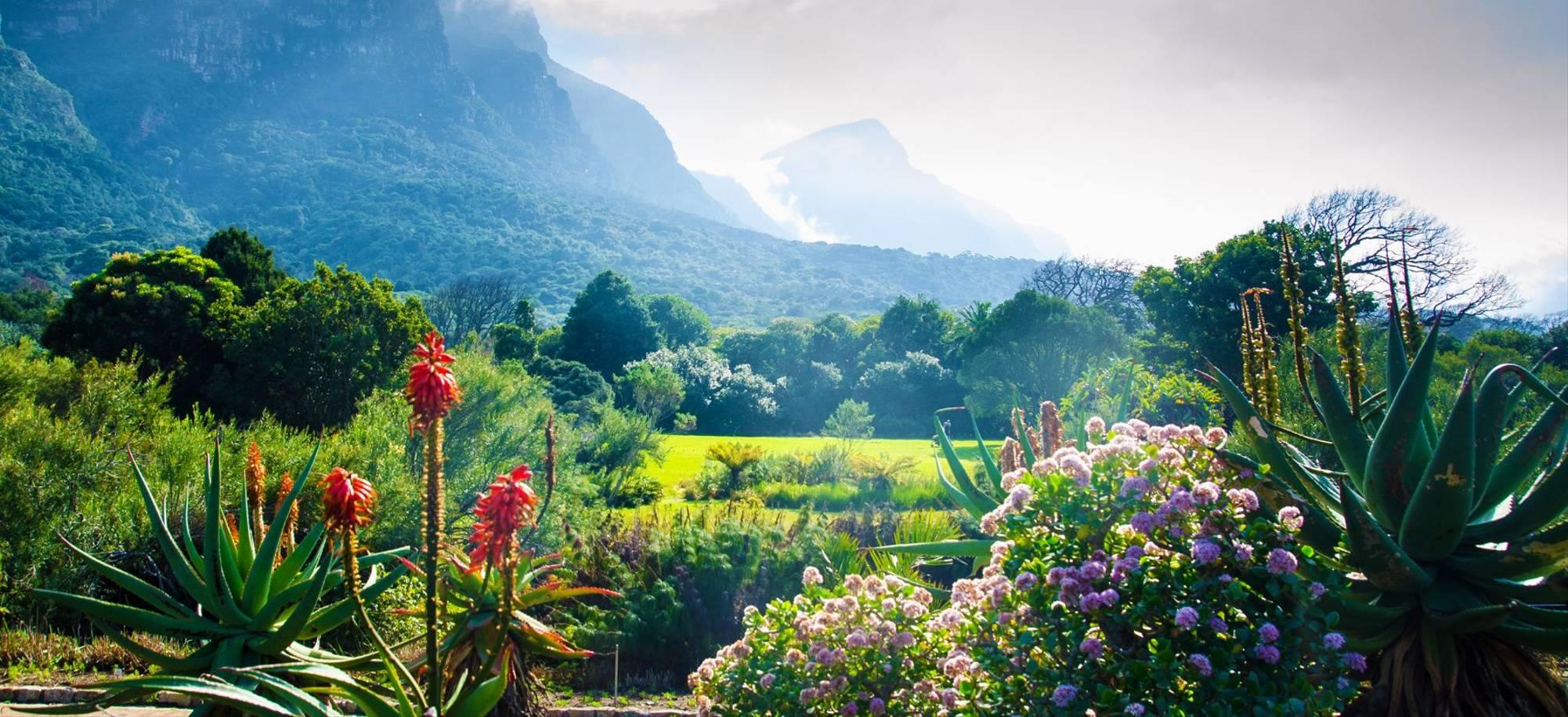 Cape Town - Kirstenbosch Gardens - Itinerary Desktop .jpg