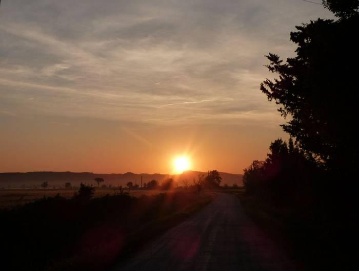 Sunrise - Camargue (Debbie Hart)