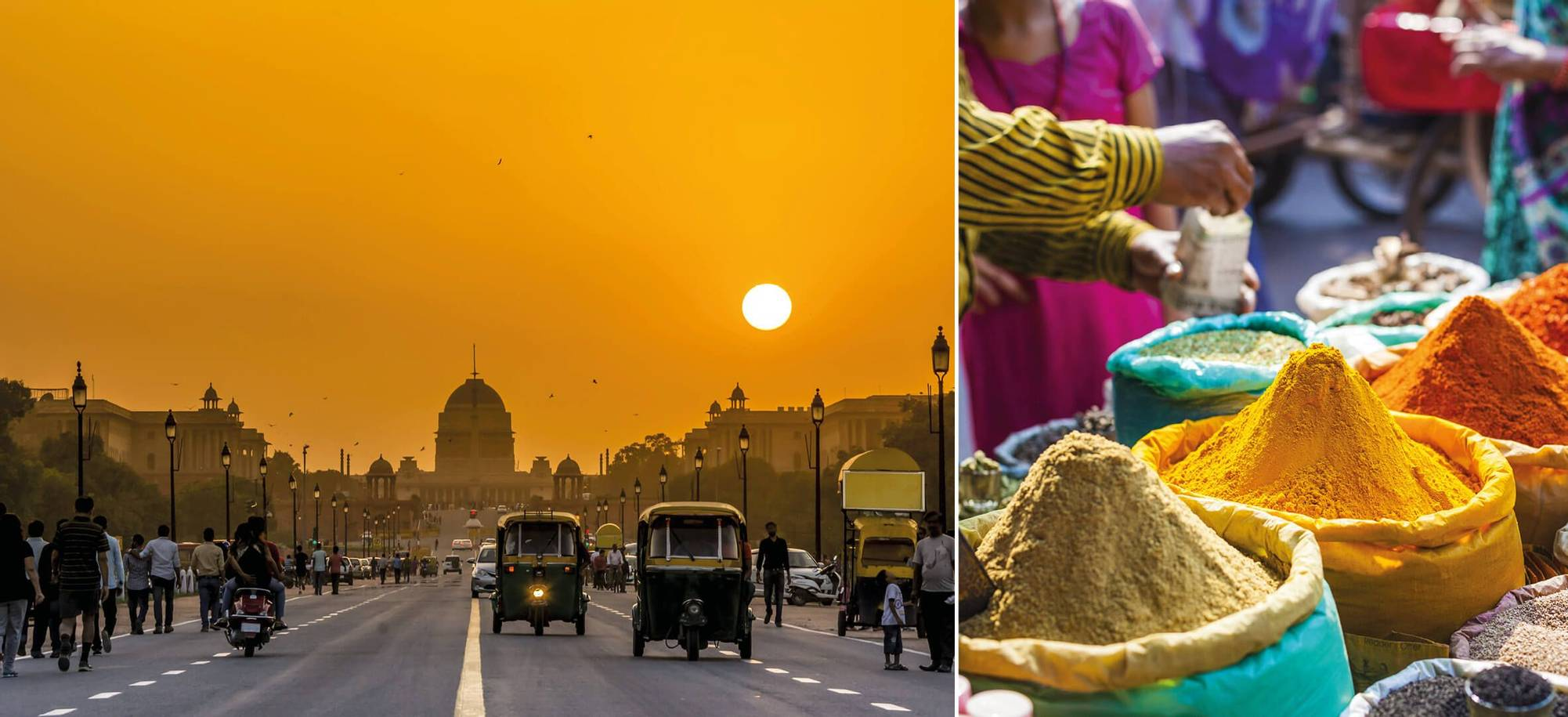 Day 24 Delhi  .jpg