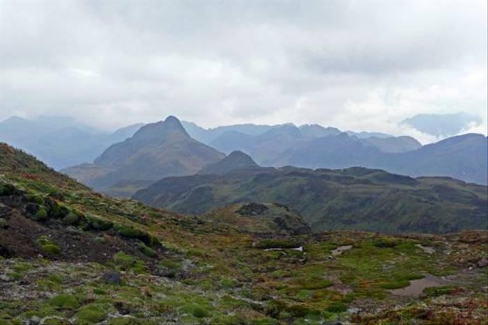 Andes, Papallacta (Robert Davidson)