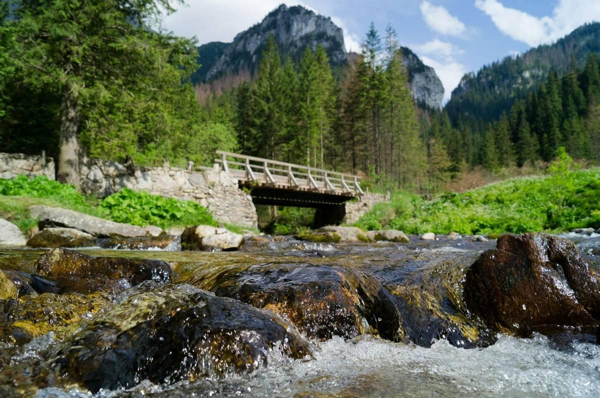 Poland -  Zakopane - AdobeStock_246133066.jpeg