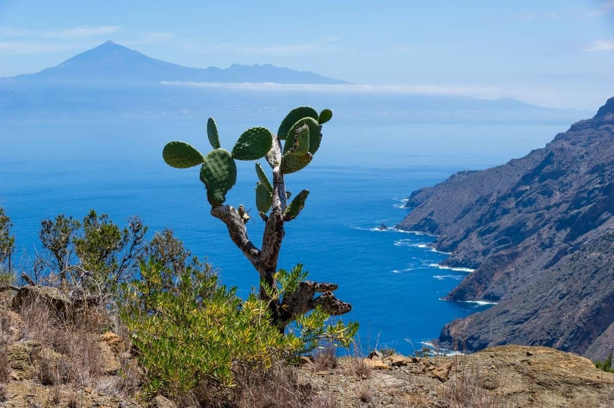 Spain - La Gomera - AdobeStock_169298300.jpeg