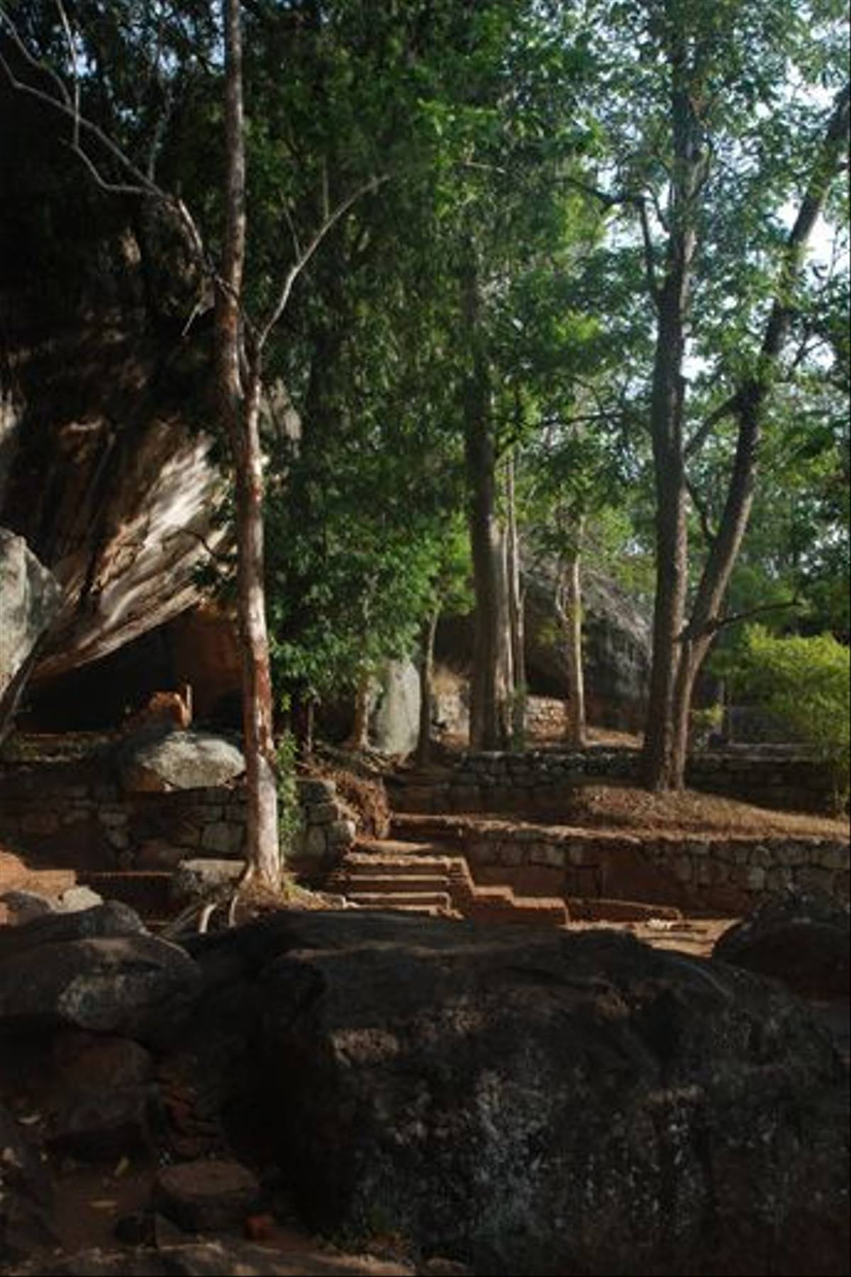 The start of the walk up Sigiriya Rock (Thomas Mills)