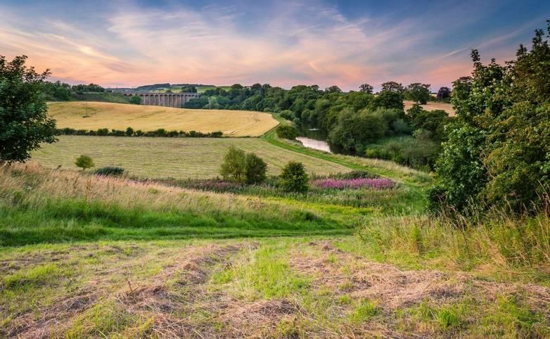 River-Aln-at-Lesbury-AdobeStock_168750952.jpg