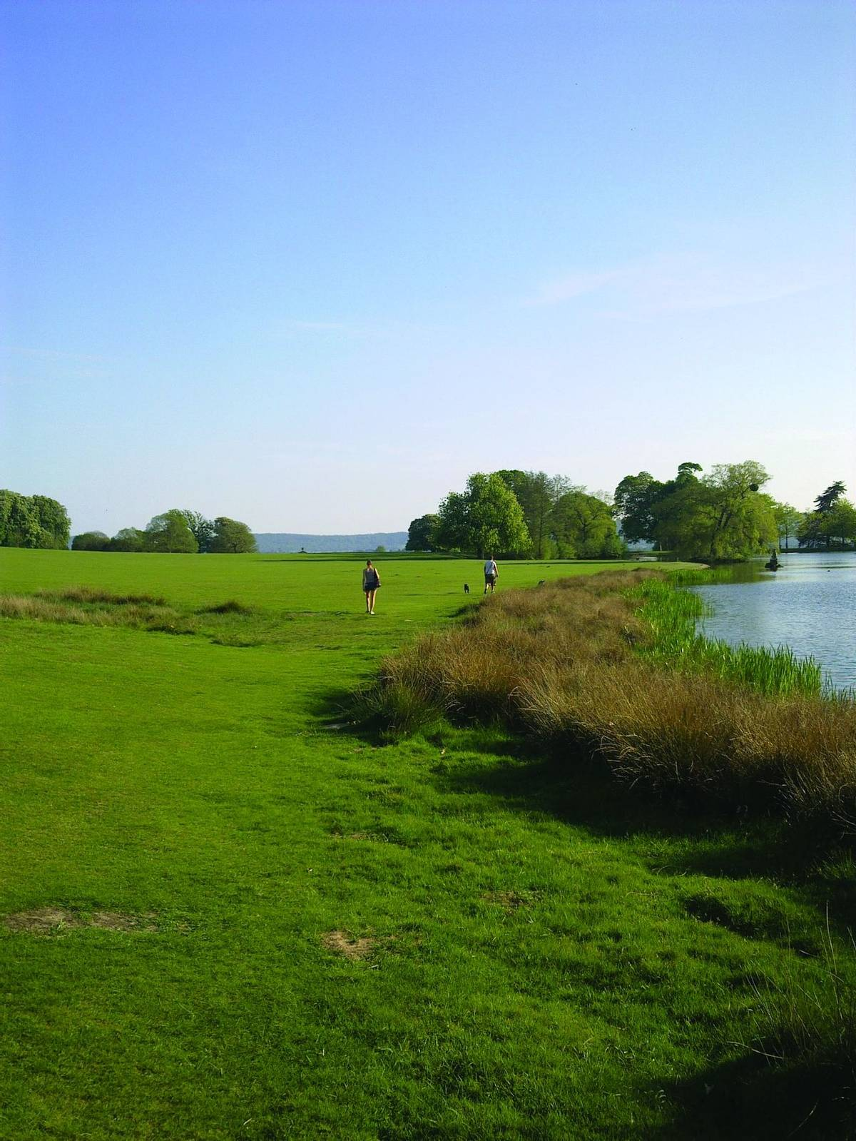 Abingworth - Petworth Park.jpg